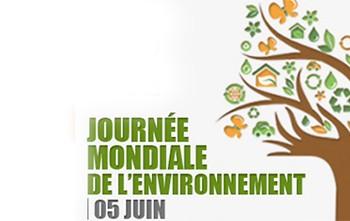 Conseils pour la journée mondiale de l'environnement au bureau