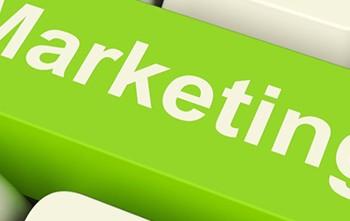 Du Marketing vert pour les entreprises écoresponsables